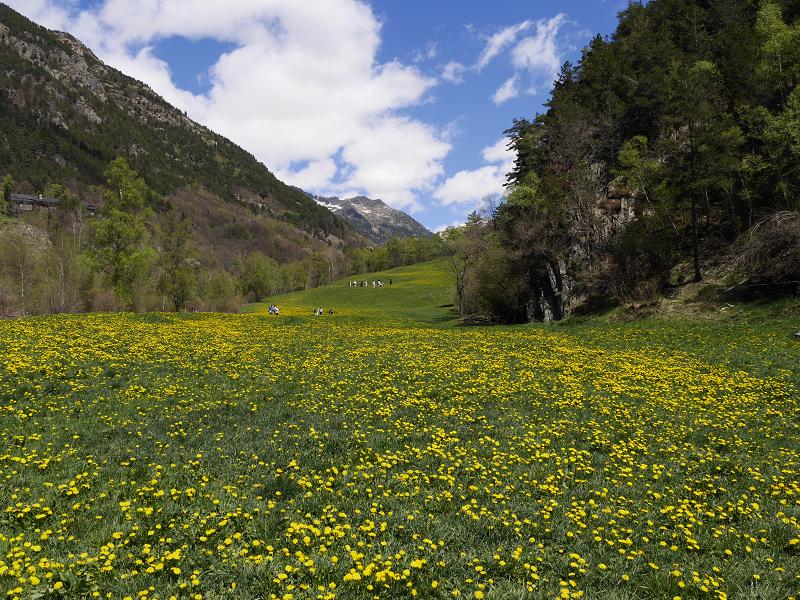 Les excursions en Andorre