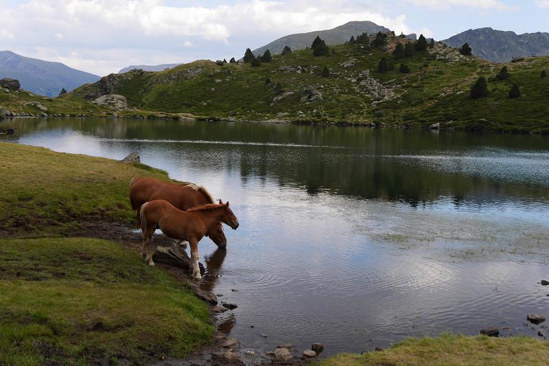 Les vacances actives dans d'Andorre. Ecotourisme