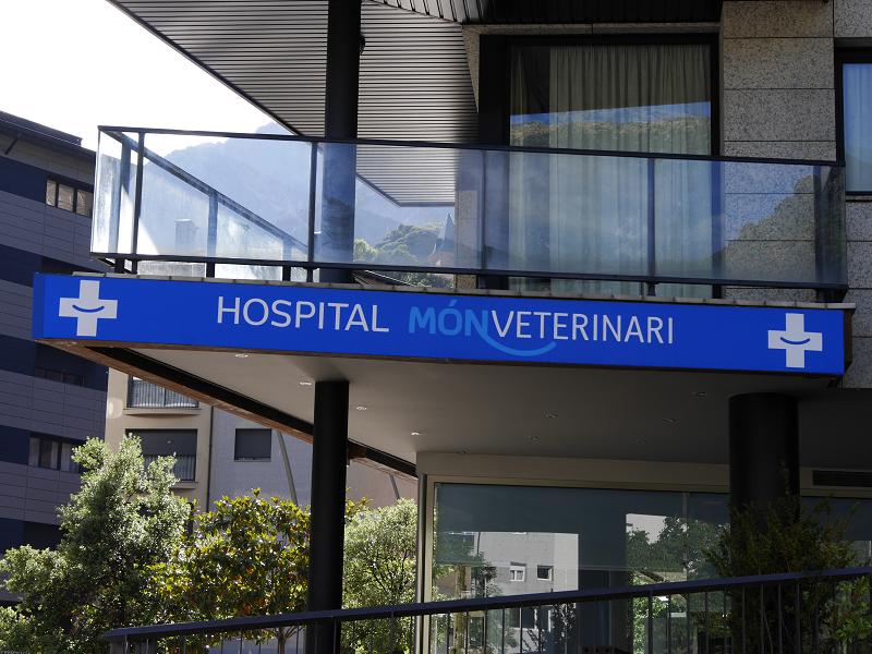 ветеринарки_ветеринарные клиники