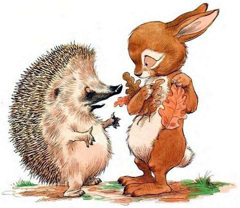 rabbit-hedgehog