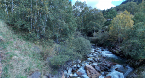 river ecology andorra