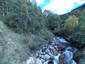 river ecology andorra