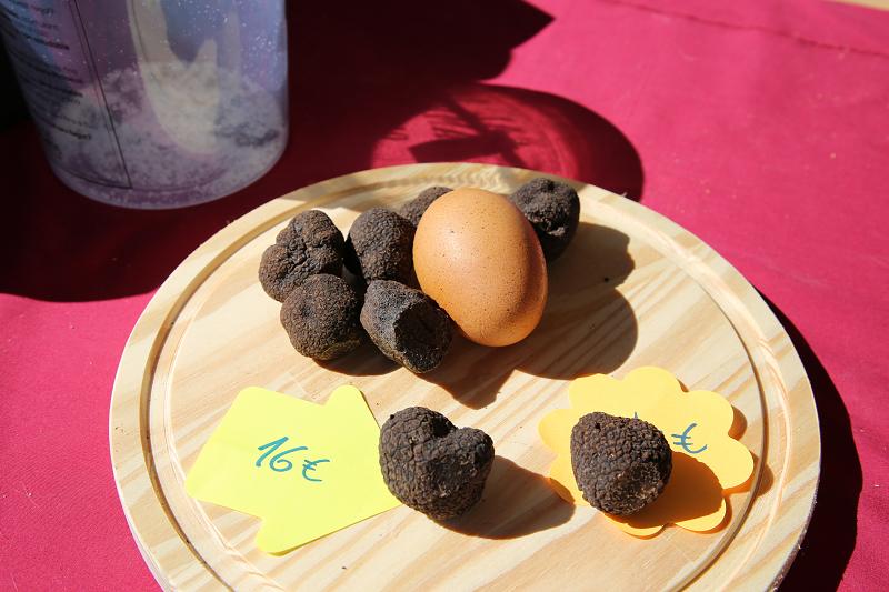 Ярмарка трюфелей в Сольсоне 2019: грибы и цены