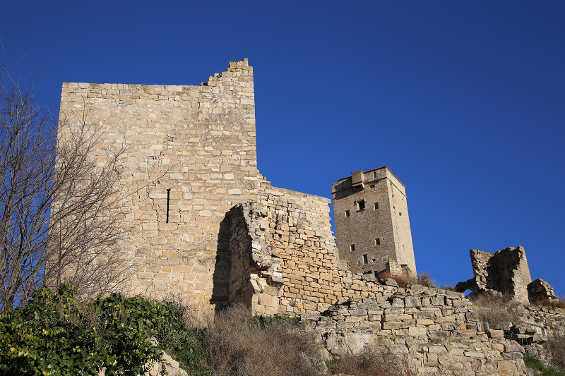 Le château de Ciutadilla