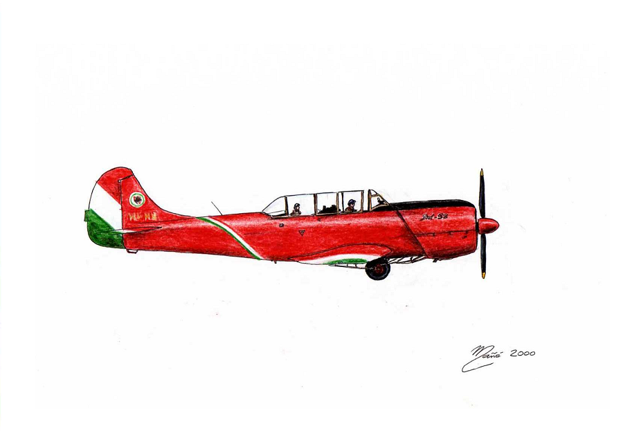 Hungarian Air Force Yak 52  Ink and pencil drawing by Joan